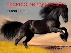 Cursos y charlas cuidado y salud de caballo. Veterinario Horsevet