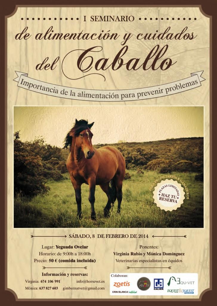 Alimentación y cuidados del caballo. Veterinario Horsevte