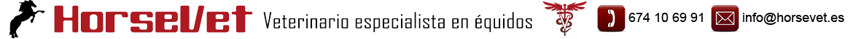 Horsevet Veterinario de Caballos logo